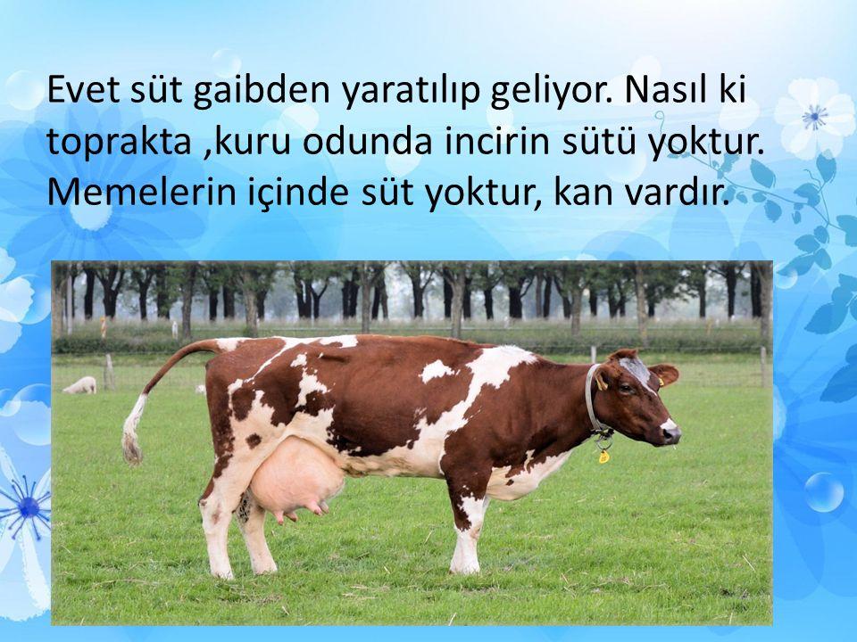 Evet süt gaibden yaratılıp geliyor.Nasıl ki toprakta,kuru odunda incirin sütü yoktur.