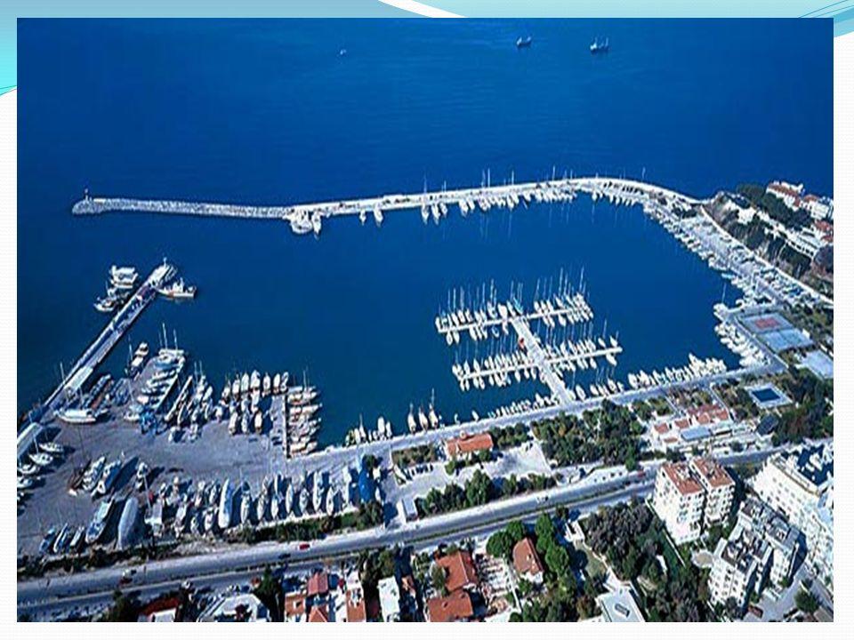 Ön Büro Şefi / Görevlisi Marinada kalmakta olan ve yeni gelen müşterilere, marina yapısı, kuralları ve servis fiyatları ile çevre hakkında bilgiler vermek,