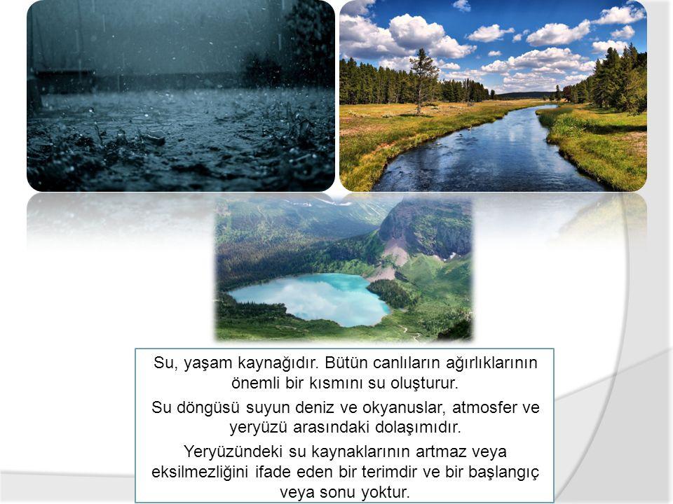 Su, yaşam kaynağıdır. Bütün canlıların ağırlıklarının önemli bir kısmını su oluşturur. Su döngüsü suyun deniz ve okyanuslar, atmosfer ve yeryüzü arası