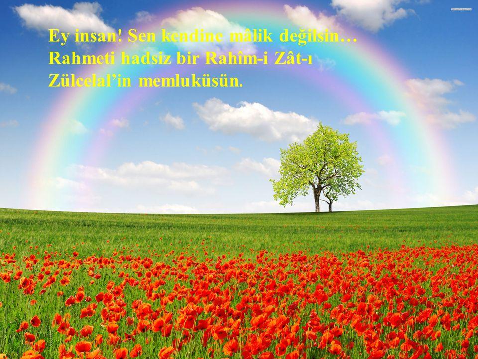 Ey insan! Sen kendine mâlik değilsin… Rahmeti hadsiz bir Rahîm-i Zât-ı Zülcelal'in memluküsün.