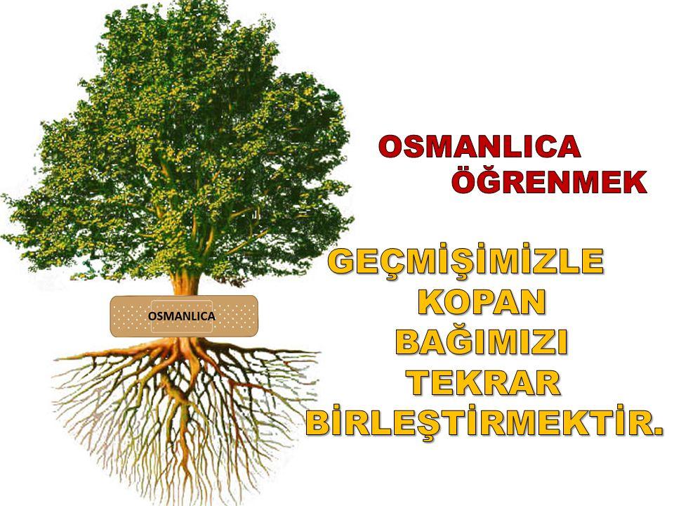 Türkiye'de entelektüelliğin şartı Osmanlıca bilmektir.