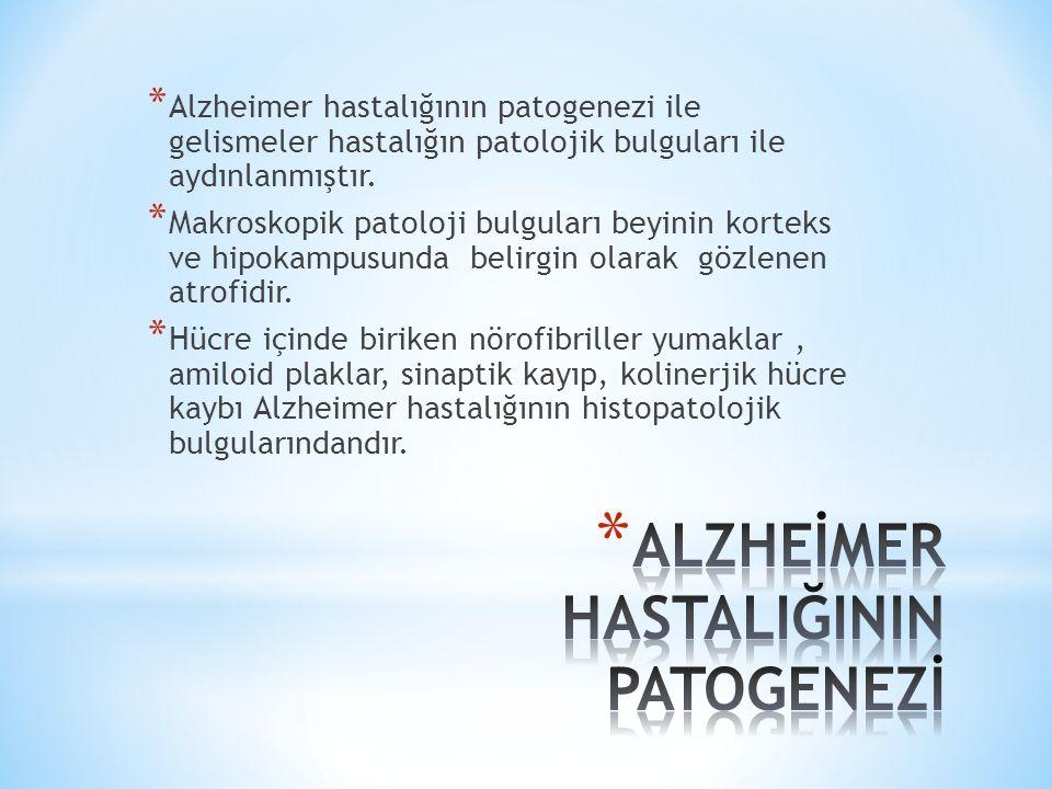* Alzheimer hastalığının patogenezi ile gelismeler hastalığın patolojik bulguları ile aydınlanmıştır.