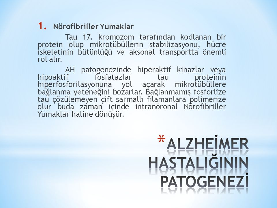 1.Nörofibriller Yumaklar Tau 17.