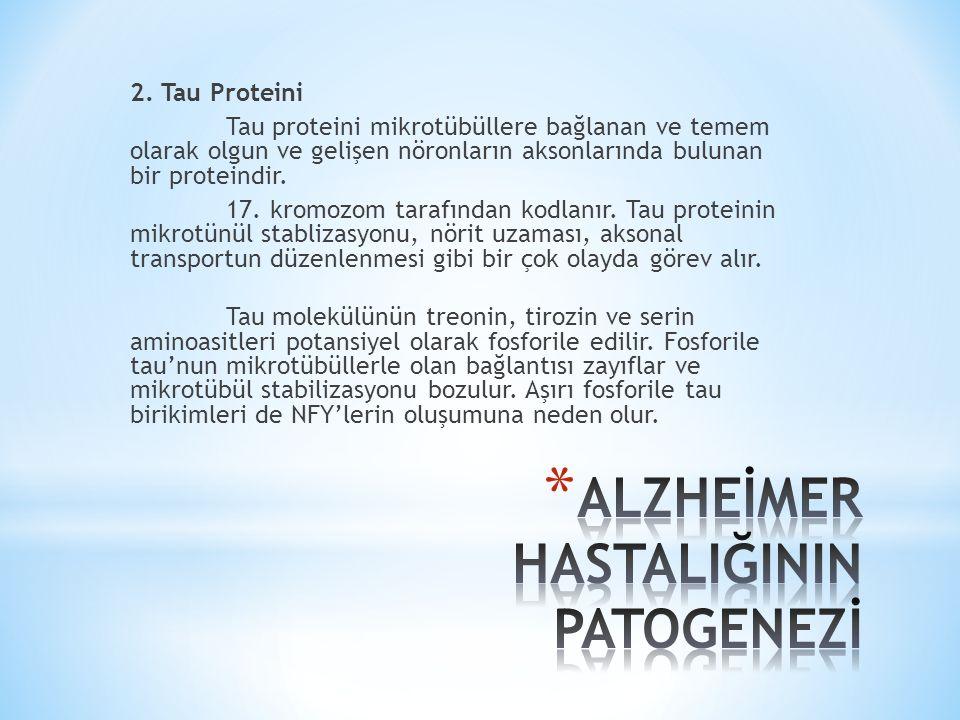 2. Tau Proteini Tau proteini mikrotübüllere bağlanan ve temem olarak olgun ve gelişen nöronların aksonlarında bulunan bir proteindir. 17. kromozom tar