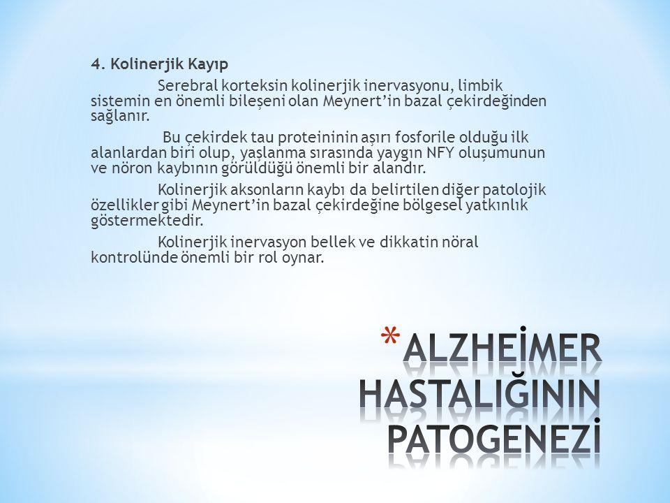4. Kolinerjik Kayıp Serebral korteksin kolinerjik inervasyonu, limbik sistemin en önemli bileşeni olan Meynert'in bazal çekirdeğinden sağlanır. Bu çek