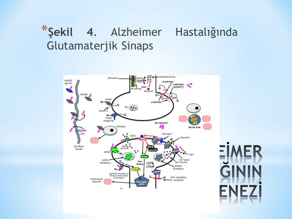 * Şekil 4. Alzheimer Hastalığında Glutamaterjik Sinaps