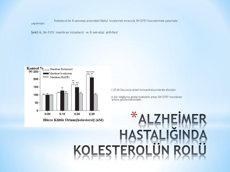 Kolesterol ile β-sekretaz arasındaki ilişkiyi incelemek amacıyla SH-SY5Y hücrelerinde çalışmalar yapılmıştır.