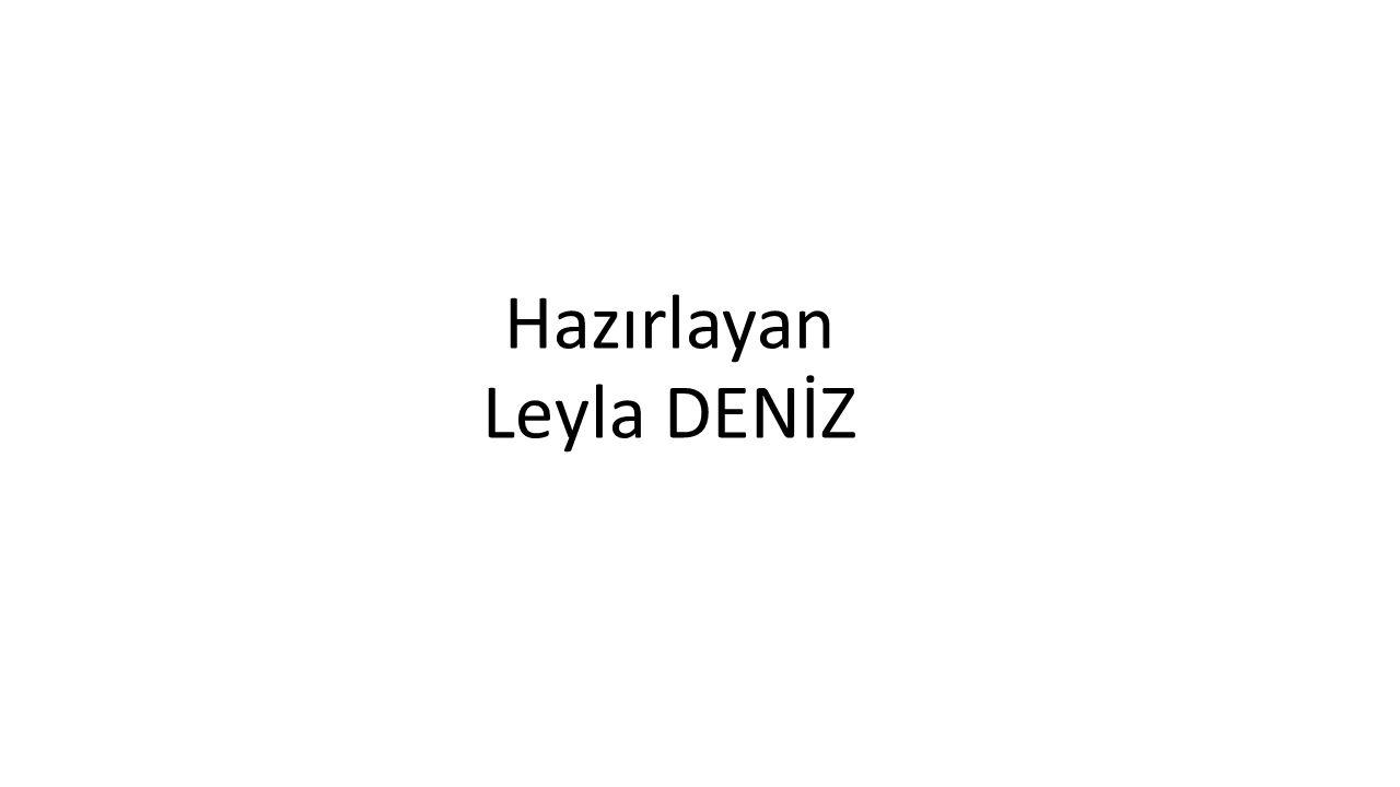 Hazırlayan Leyla DENİZ