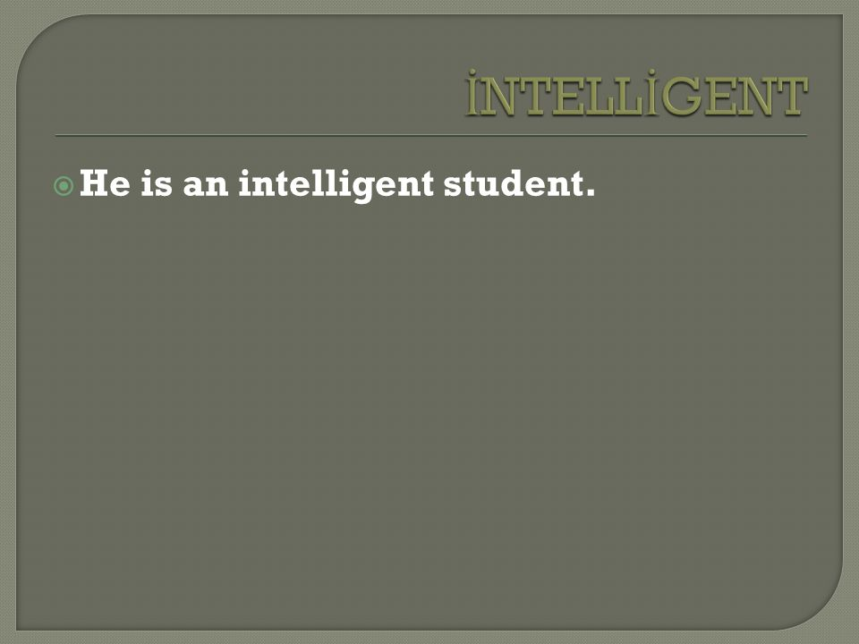  He is an intelligent student.