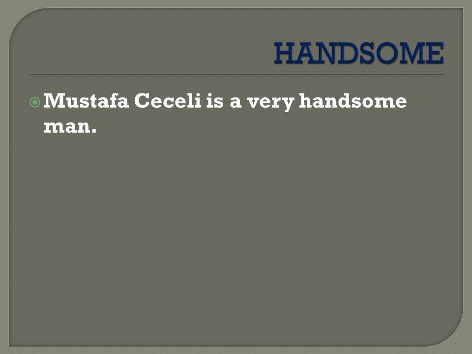  Mustafa Ceceli is a very handsome man.