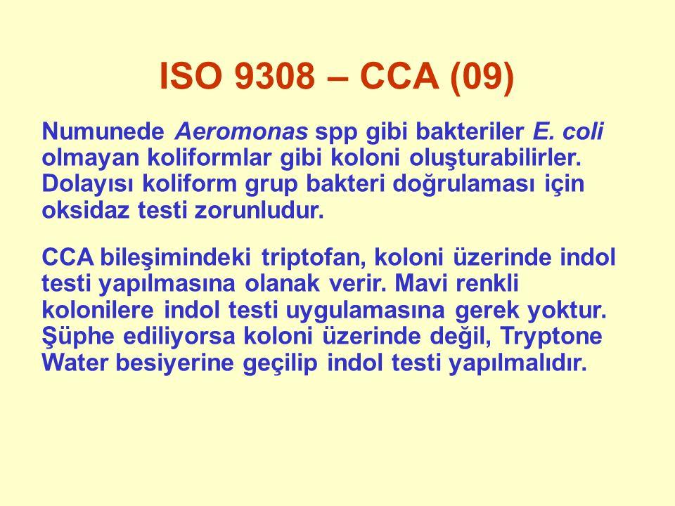 ISO 9308 – CCA (09) Numunede Aeromonas spp gibi bakteriler E. coli olmayan koliformlar gibi koloni oluşturabilirler. Dolayısı koliform grup bakteri do