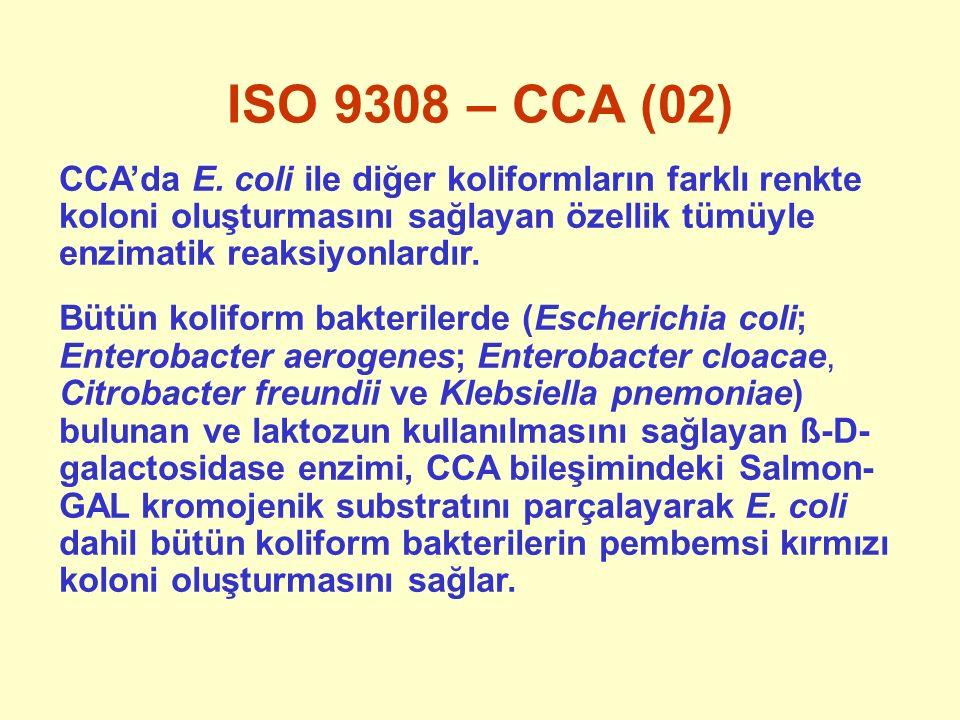 ISO 9308 – CCA (02) CCA'da E. coli ile diğer koliformların farklı renkte koloni oluşturmasını sağlayan özellik tümüyle enzimatik reaksiyonlardır. Bütü