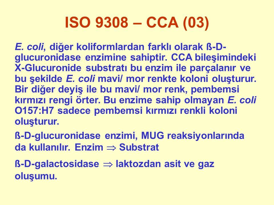 ISO 9308 – CCA (03) E. coli, diğer koliformlardan farklı olarak ß-D- glucuronidase enzimine sahiptir. CCA bileşimindeki X-Glucuronide substratı bu enz