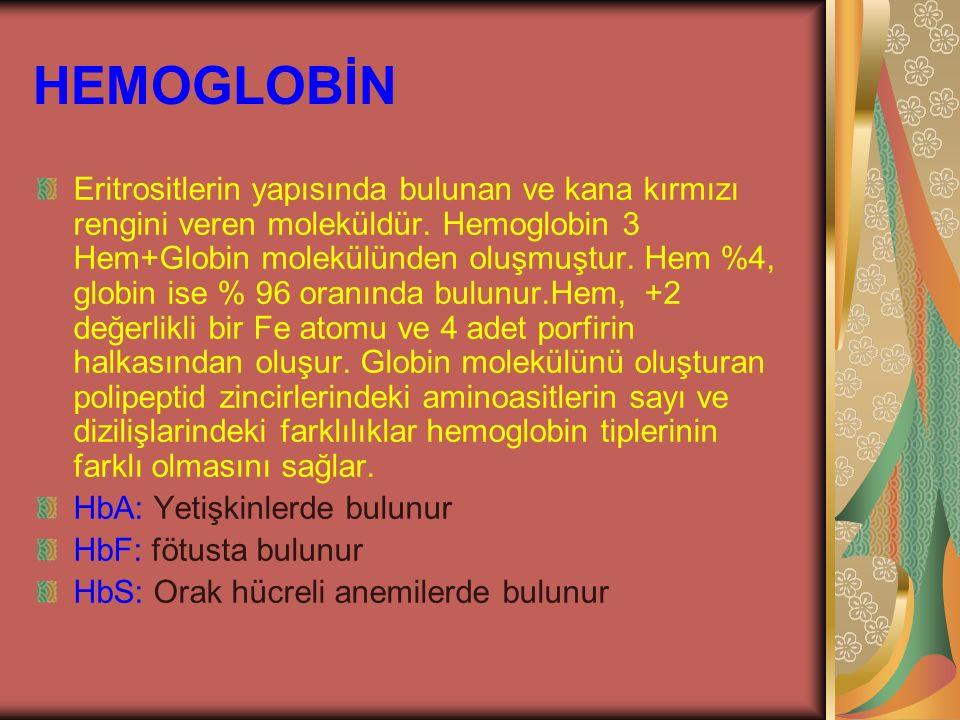 HEMOGLOBİN Eritrositlerin yapısında bulunan ve kana kırmızı rengini veren moleküldür. Hemoglobin 3 Hem+Globin molekülünden oluşmuştur. Hem %4, globin