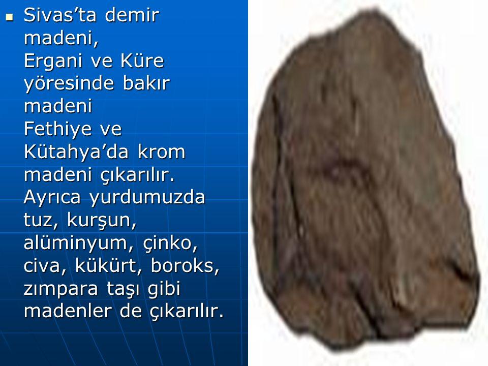 Sivas'ta demir madeni, Ergani ve Küre yöresinde bakır madeni Fethiye ve Kütahya'da krom madeni çıkarılır.