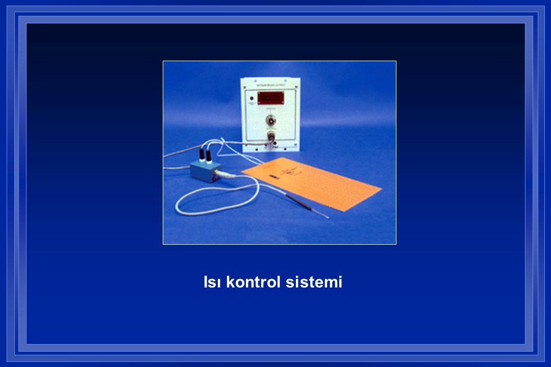 Isı kontrol sistemi