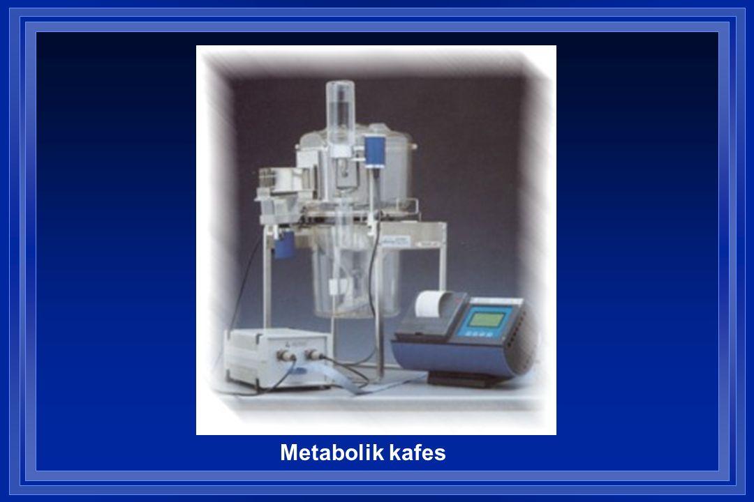 Metabolik kafes