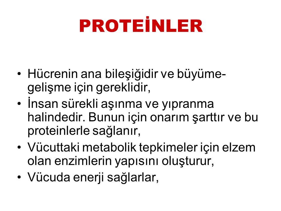 Protein kaynakları ve kalitesi Yumurta, et, süt ve türevleri (yoğurt, peynir), kuru baklagiller ve tahıllar protein kaynaklarıdır.