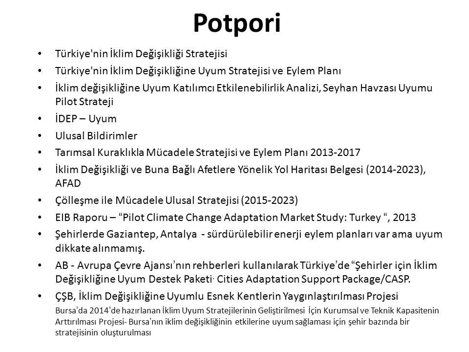 Potpori Türkiye'nin İklim Değişikliği Stratejisi Türkiye'nin İklim Değişikliğine Uyum Stratejisi ve Eylem Planı İklim değişikliğine Uyum Katılımcı Etk