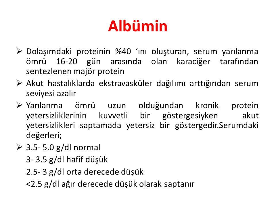 Albümin  Dolaşımdaki proteinin %40 'ını oluşturan, serum yarılanma ömrü 16-20 gün arasında olan karaciğer tarafından sentezlenen majör protein  Akut
