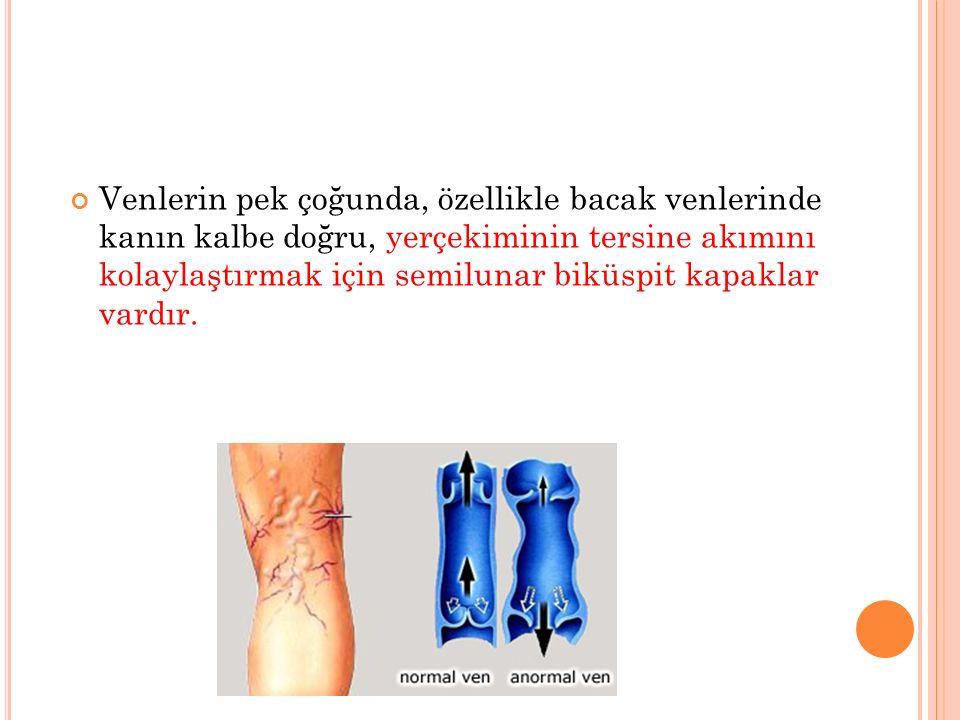 Venlerin pek çoğunda, özellikle bacak venlerinde kanın kalbe doğru, yerçekiminin tersine akımını kolaylaştırmak için semilunar biküspit kapaklar vardır.