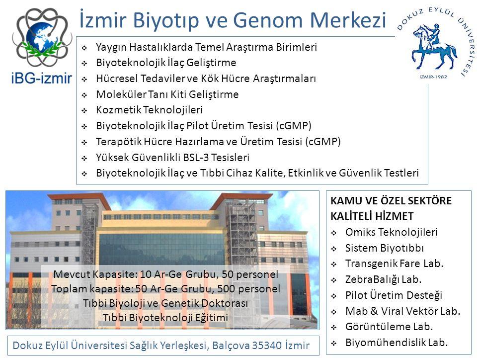  Yaygın Hastalıklarda Temel Araştırma Birimleri  Biyoteknolojik İlaç Geliştirme  Hücresel Tedaviler ve Kök Hücre Araştırmaları  Moleküler Tanı Kiti Geliştirme  Kozmetik Teknolojileri  Biyoteknolojik İlaç Pilot Üretim Tesisi (cGMP)  Terapötik Hücre Hazırlama ve Üretim Tesisi (cGMP)  Yüksek Güvenlikli BSL-3 Tesisleri  Biyoteknolojik İlaç ve Tıbbi Cihaz Kalite, Etkinlik ve Güvenlik Testleri İzmir Biyotıp ve Genom Merkezi Dokuz Eylül Üniversitesi Sağlık Yerleşkesi, Balçova 35340 İzmir Mevcut Kapasite: 10 Ar-Ge Grubu, 50 personel Toplam kapasite: 50 Ar-Ge Grubu, 500 personel Tıbbi Biyoloji ve Genetik Doktorası Tıbbi Biyoteknoloji Eğitimi KAMU VE ÖZEL SEKTÖRE KALİTELİ HİZMET  Omiks Teknolojileri  Sistem Biyotıbbı  Transgenik Fare Lab.