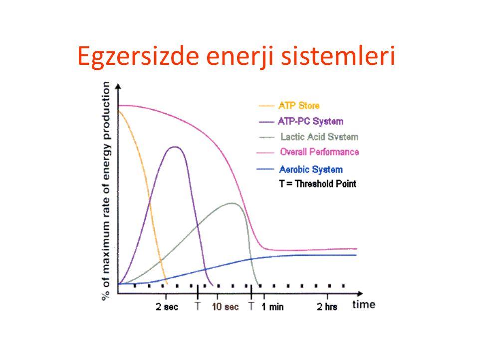 Sprinter / Atlayıcı Yıl boyu antrenman 11 antr/hf 1/3 ağırlık antr Anaerob enerji, güç Güç / ağırlık oranı Düşük VYO KH, protein Toparlanmaya dikkat: antr hemen sonra pro, KH