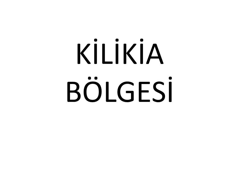 KİLİKİA NERESİDİR .Kilikia dağlık ve ovalık Kilikia olmak üzere 2' ye ayrılır.
