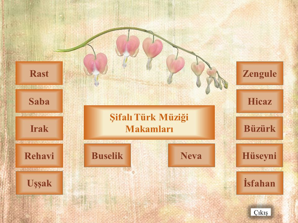Sesli İzleyiniz Şifalı Türk Müziği Makamları