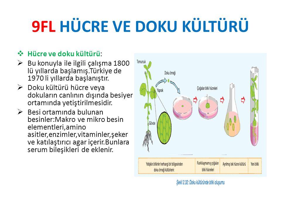 9FL HÜCRE VE DOKU KÜLTÜRÜ  Hücre ve doku kültürü:  Bu konuyla ile ilgili çalışma 1800 lü yıllarda başlamış.Türkiye de 1970 li yıllarda başlanıştır.