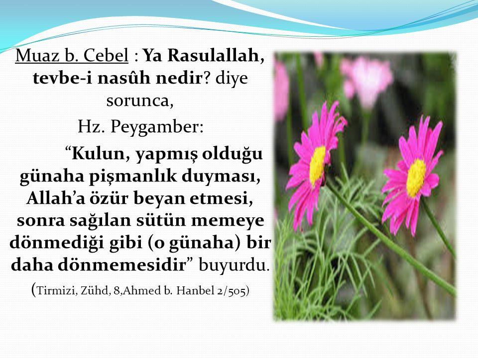 """Muaz b. Cebel : Ya Rasulallah, tevbe-i nasûh nedir? diye sorunca, Hz. Peygamber: """"Kulun, yapmış olduğu günaha pişmanlık duyması, Allah'a özür beyan et"""