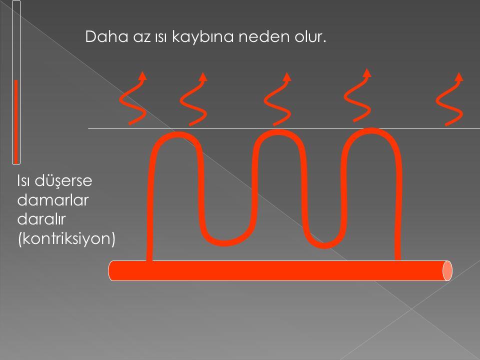 1. Vasokontriksiyon (kan damarlarının büzülmesi) Vazodilasyonun tam tersidir Vazodilasyonun tam tersidir Deri altındaki kapilerler kasılır ve daralır.
