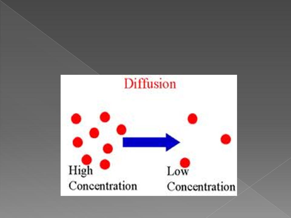 Beden sıvılarında bulunan iyon ve moleküller büyüklük ve sayılarına göre hareket eder. İyonlar ve moleküller sürekli hareket halinde bulunurlar. İyon