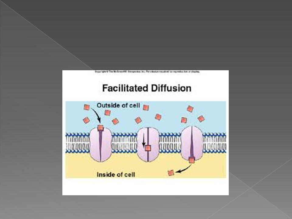  Bazen yoğunluk farkı olmasına rağmen bazı maddeler geçirgen olan zardan karşı tarafa geçemez. Bir zardan doğrudan geçemeyen madde taşıyıcı bir molek