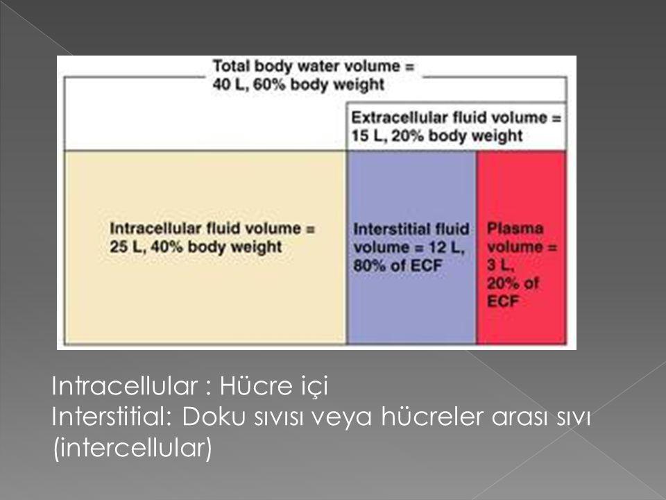 Intracellular : Hücre içi Interstitial: Doku sıvısı veya hücreler arası sıvı (intercellular)
