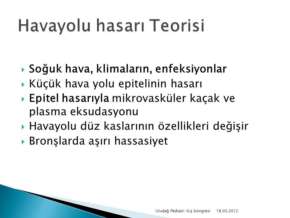  Tüple dalış 18.03.2012 Uludağ Pediatri Kış Kongresi