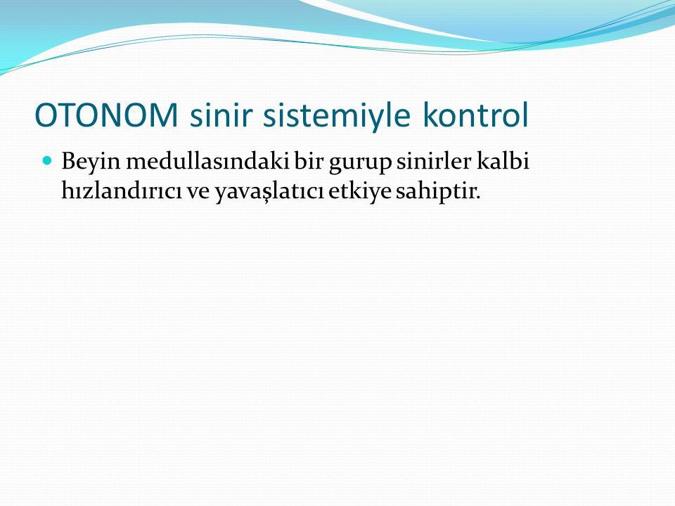 OTONOM sinir sistemiyle kontrol Beyin medullasındaki bir gurup sinirler kalbi hızlandırıcı ve yavaşlatıcı etkiye sahiptir.
