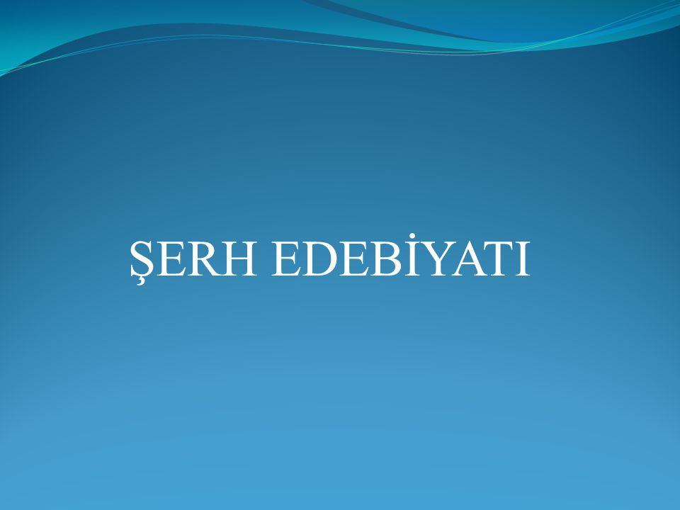 ŞERH EDEBİYATI