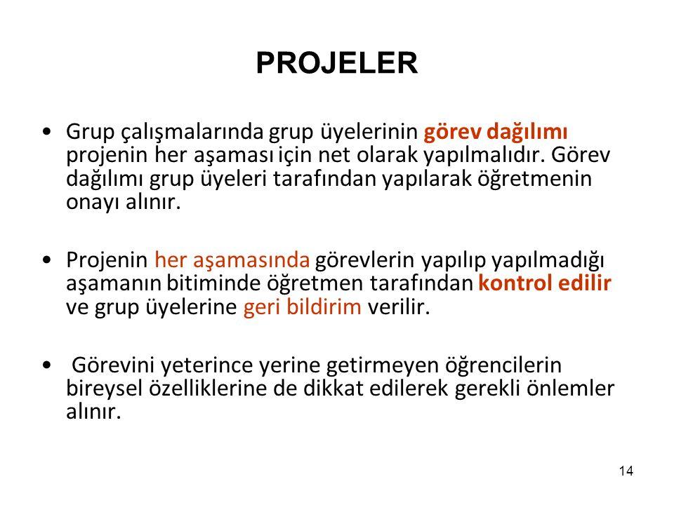 PROJELER Grup çalışmalarında grup üyelerinin görev dağılımı projenin her aşaması için net olarak yapılmalıdır.