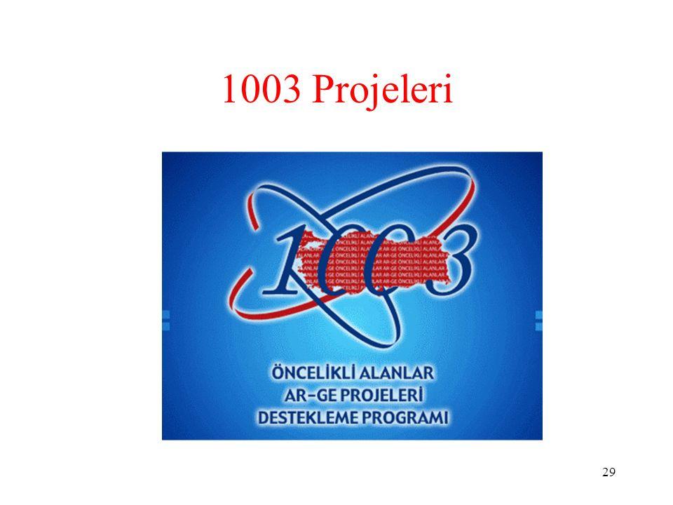 1003 Projeleri 29