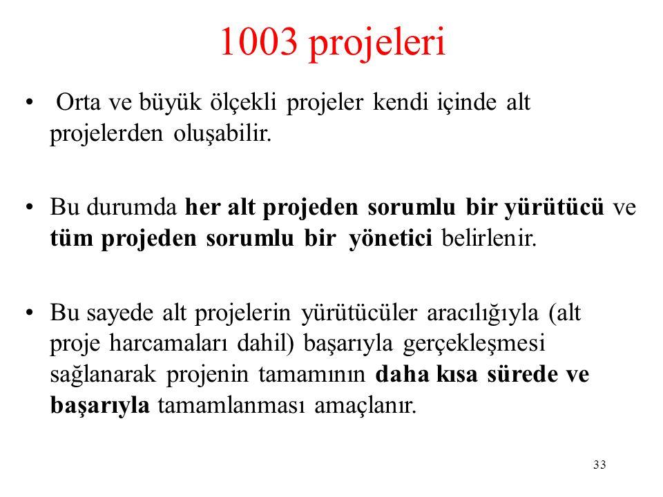 1003 projeleri Orta ve büyük ölçekli projeler kendi içinde alt projelerden oluşabilir. Bu durumda her alt projeden sorumlu bir yürütücü ve tüm projede