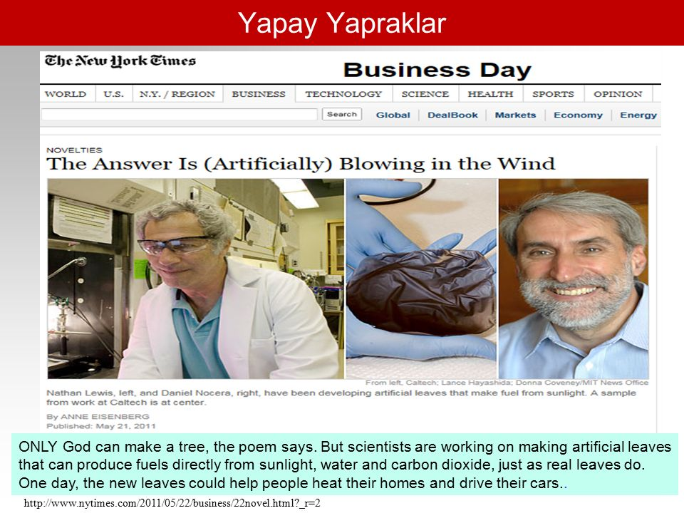 Yapay Yapraklar http://www.nytimes.com/2011/05/22/business/22novel.html _r=2 ONLY God can make a tree, the poem says.