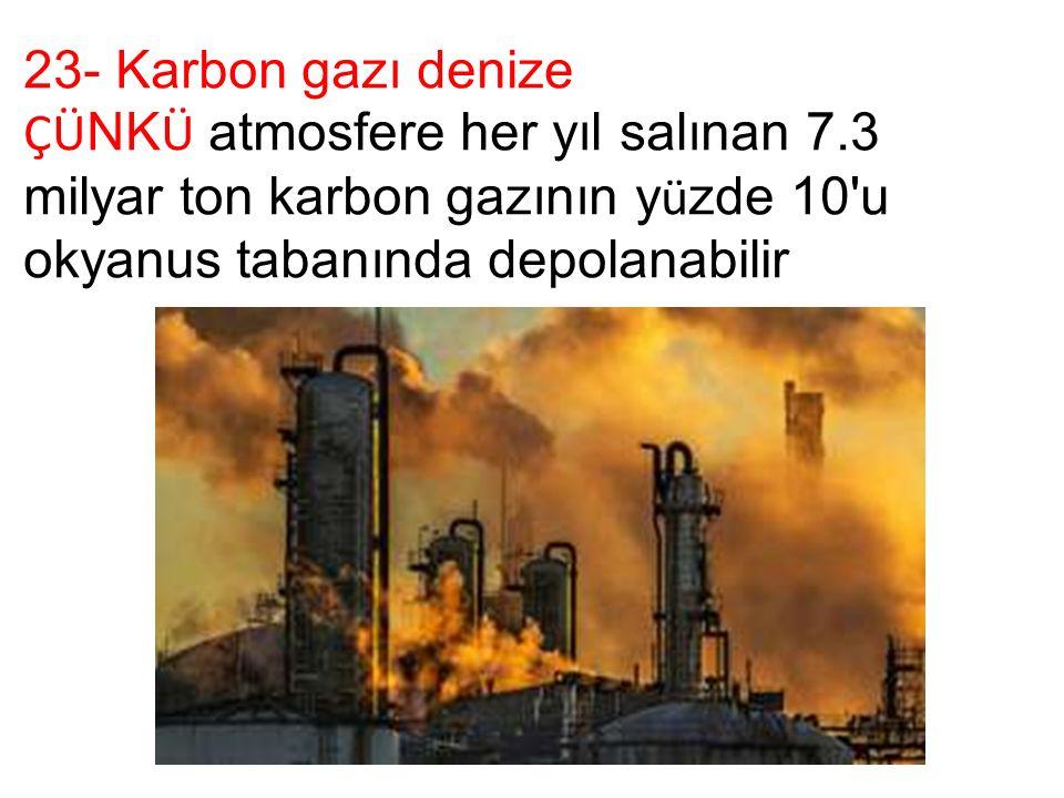 23- Karbon gazı denize ÇÜ NK Ü atmosfere her yıl salınan 7.3 milyar ton karbon gazının y ü zde 10 u okyanus tabanında depolanabilir