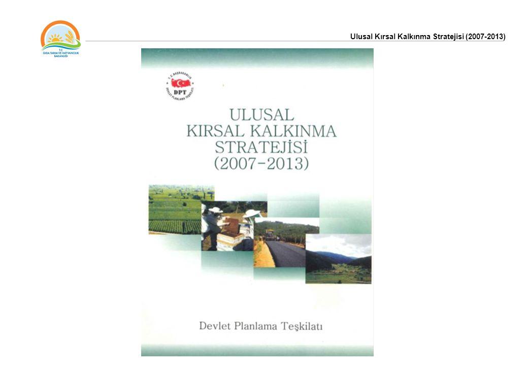 Tarım Stratejisi (2006-2010) çerçevesinde belirlenen desteklerle tutarlılık ve bütünlük sağlayacak şekilde, Ulusal Kırsal Kalkınma Stratejisi –I (UKKS) (2007-2013) dönemi için DPT koordinasyonunda hazırlanmıştır.