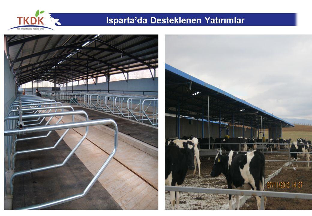 Isparta'da Desteklenen Yatırımlar 16
