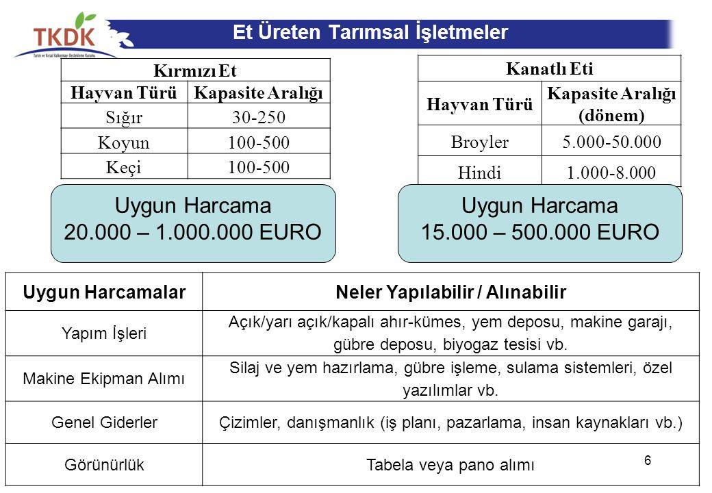 Isparta'da Desteklenen Yatırımlar 17