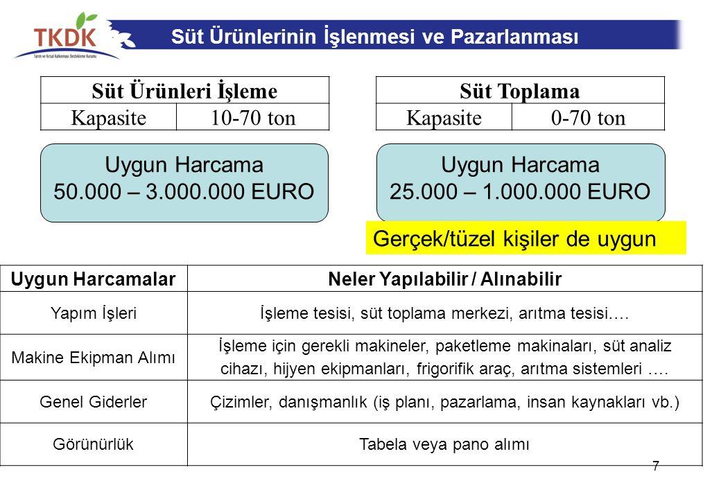 Isparta'da Desteklenen Yatırımlar 18