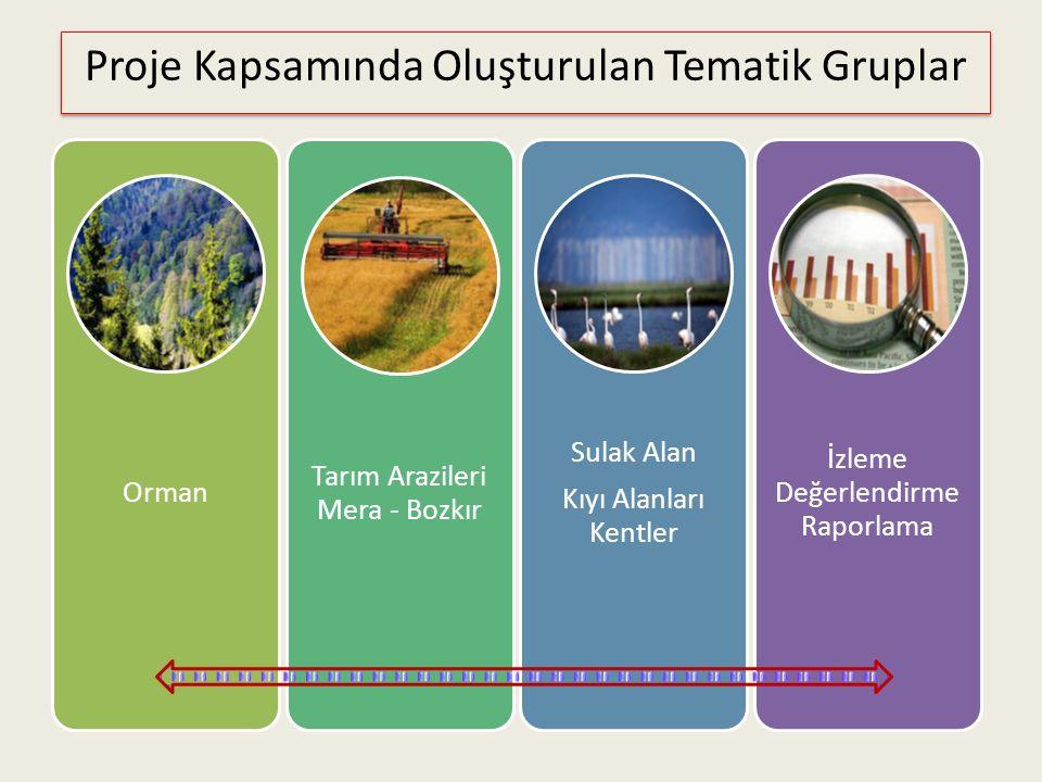 Orman Tarım Arazileri Mera - Bozkır Sulak Alan Kıyı Alanları Kentler İzleme Değerlendirme Raporlama Proje Kapsamında Oluşturulan Tematik Gruplar