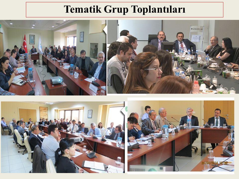 Tematik Grup Toplantıları