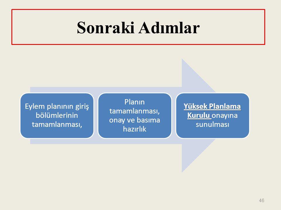 Sonraki Adımlar 46 Eylem planının giriş bölümlerinin tamamlanması, Planın tamamlanması, onay ve basıma hazırlık Yüksek Planlama Kurulu Yüksek Planlama